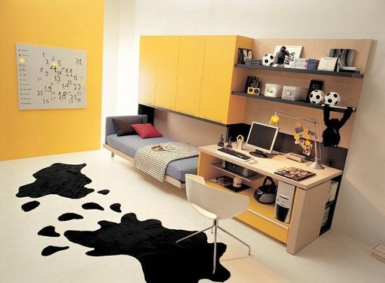 cool beds design ideas - Murphy Bed Design Ideas