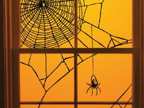 Spiderweb window decorating idea