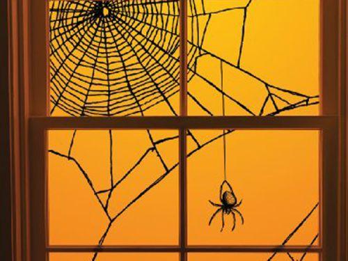Spiderweb window decorating idea