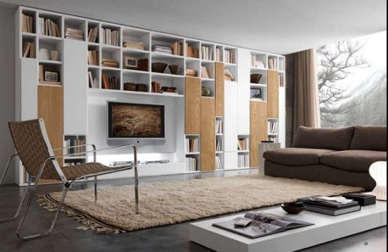 home libraries - Home Library Design Ideas