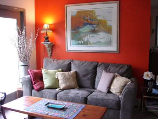 Striking small living room with accent wall