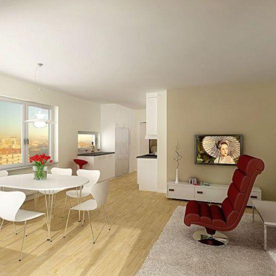 Studio apartment with minimalist decor