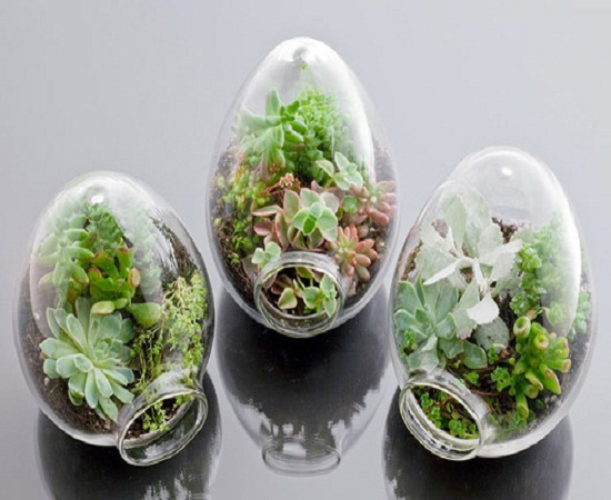 12 Terrarium Ideas For Home Decor Ultimate Home Ideas