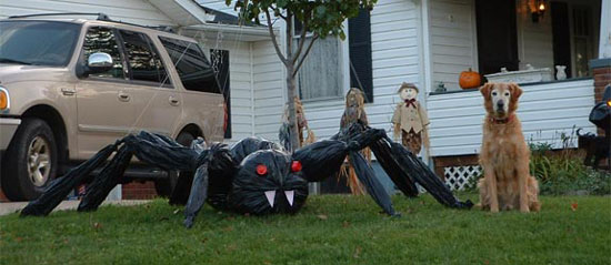 Creepy Spider Halloween Decor Ideas