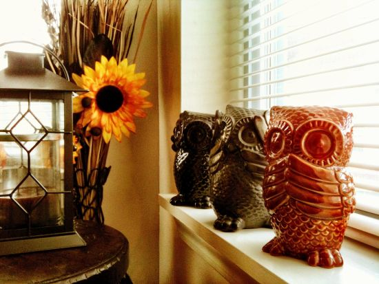 Awesome Beautiful Owls For Living Room. Owl Decor Part 3