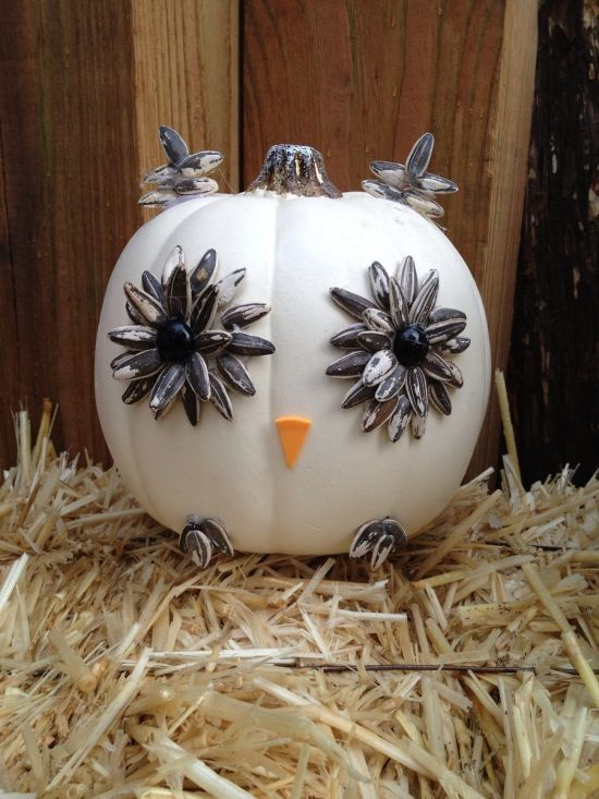 50 owl decorating ideas for your home ultimate home ideas White pumpkin carving ideas