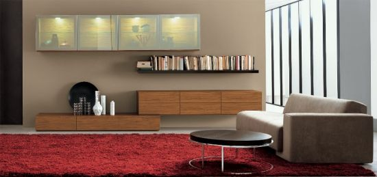 Storage Solutions Image Credit Best Living Room Designs