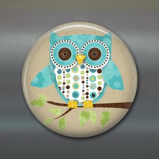 owl home decor 50 owl decorating ideas for your home ultimate home ideas 30183