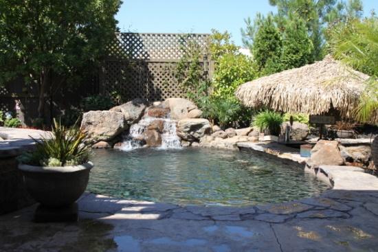 50 Backyard Swimming Pool Ideas | Ultimate Home Ideas