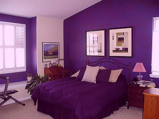 Purple Teenage Girl Bedroom Ideas Girls Bedrooms