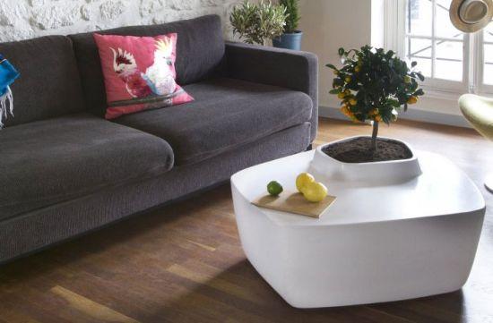 Trend Living Room Ideas
