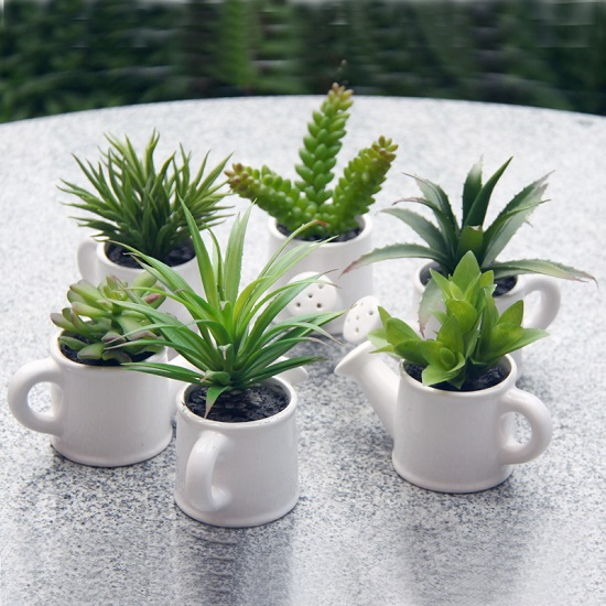 33 creative ways to include indoor plants in your home Cactus pots for sale