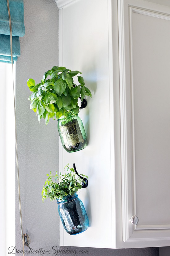 gorgeous hanging indoor plants in mason jars