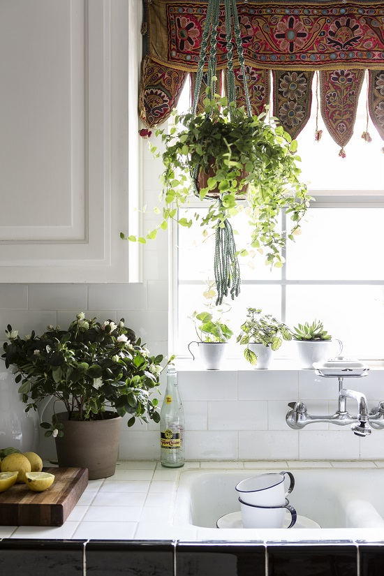 33 creative ways to include indoor plants in your home for Indoor greenery ideas