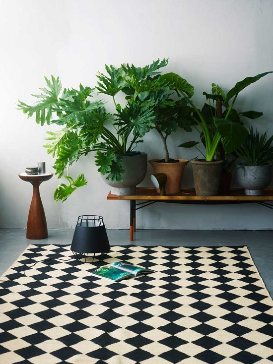 Gentil Mesmerizing Plants On Side Tables