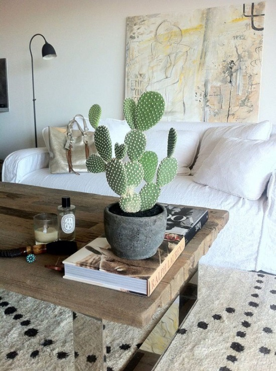 Stunning Cactus Indoor Plant in Dining Hall. 33 Creative Ways To Include Indoor Plants In Your Home