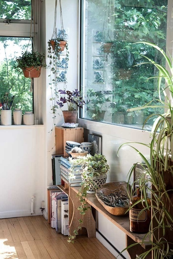 Indoor Planters Stunning Collection Of Plants Near Windows