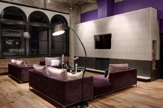 contemporary living room with purple accented wall