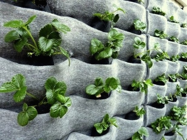 DIY Vertical Garden Idea With Flora Felt Planters