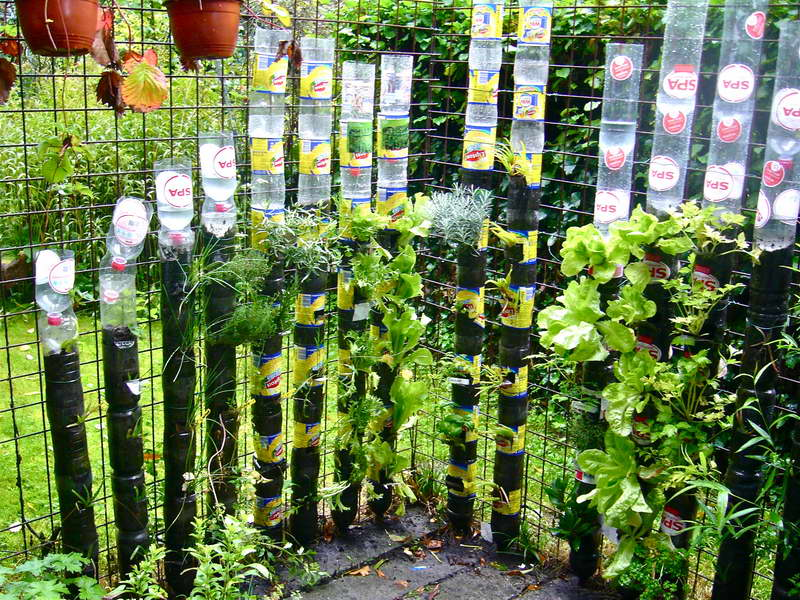 DIY Vertical Garden Idea With Plastic Bottles