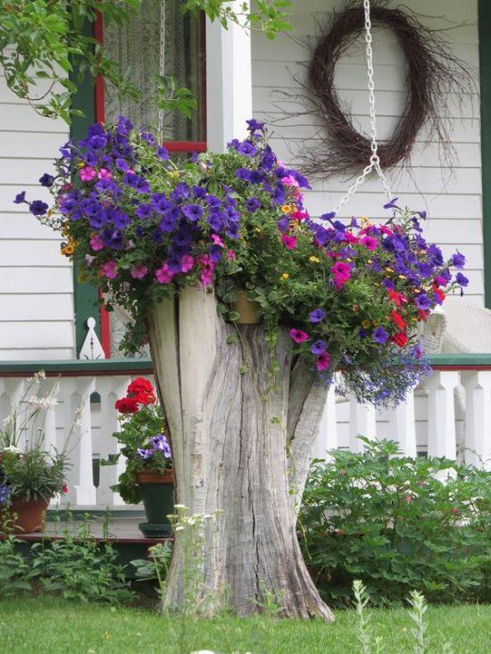Small Garden Designs