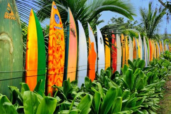 Garden Fencing Ideas home garden fencing with bench and raised flower bed Gorgeous Surf Board Garden Fencing Design