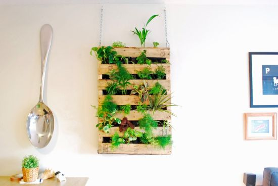DIY Indoor Herb Garden