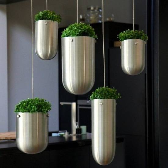 Amazing Hanging Indoor Herb Garden