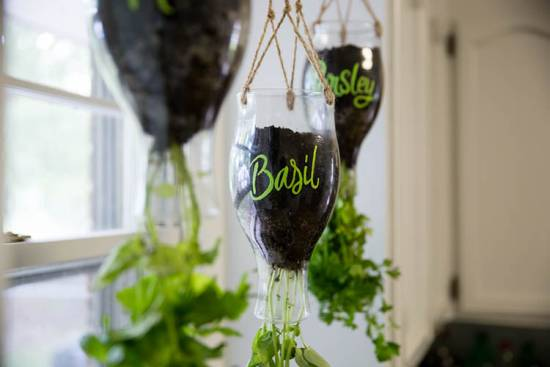 DIY Califia Hanging Herb Garden