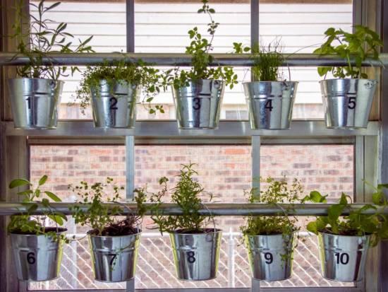 DIY Window Mounted Hanging Herb Garden