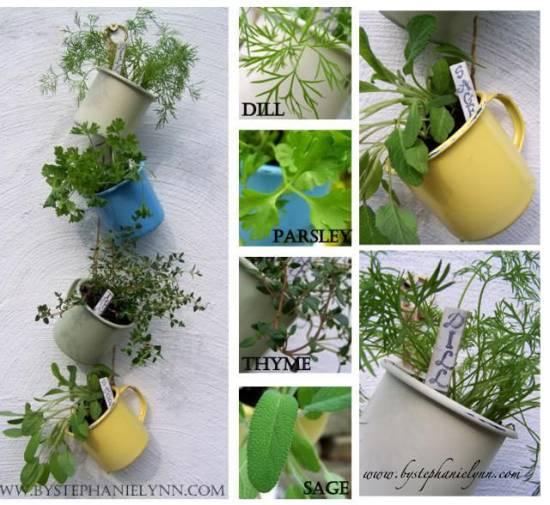 Hanging Herb Garden In Tea Cups