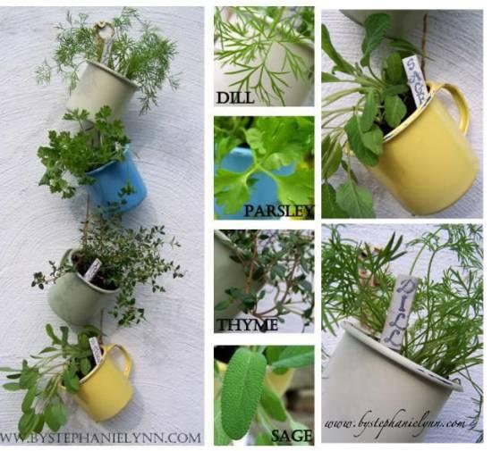 Hanging Herb Garden In Tea Cups