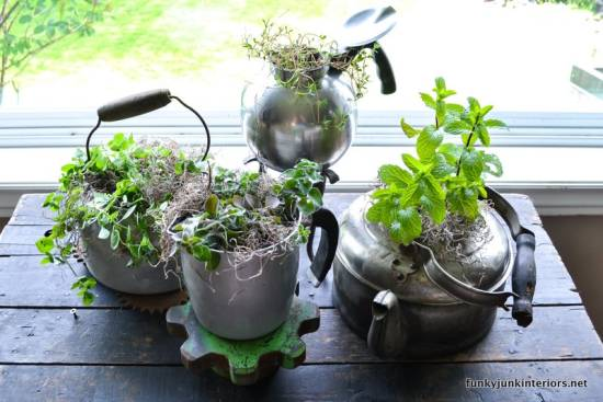 Herb garden planted in old kettles