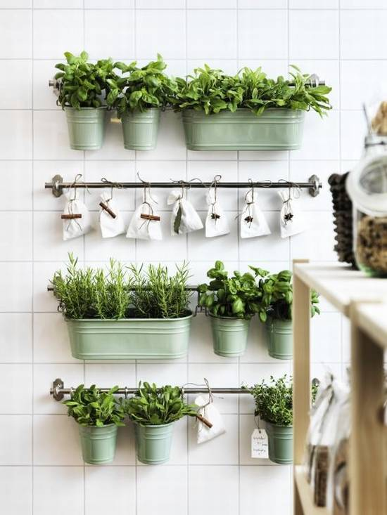 35 creative diy indoor herbs garden ideas ultimate Indoor living wall herb garden