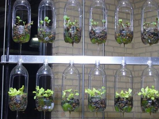 Recycled Bottle Herb Garden Ideas