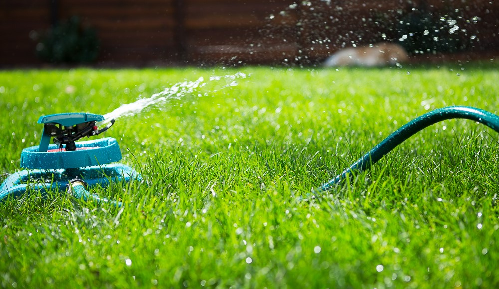 Maintain Your Lawn