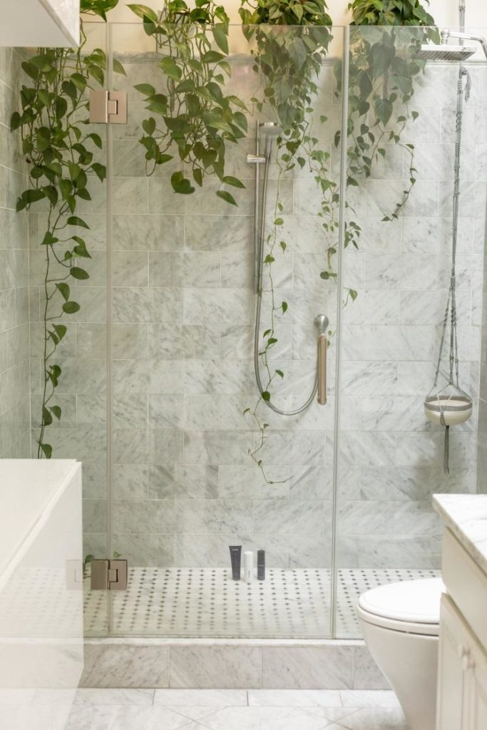 Shower stall with plantation