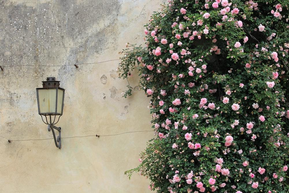 Wall sconce in outdoor area